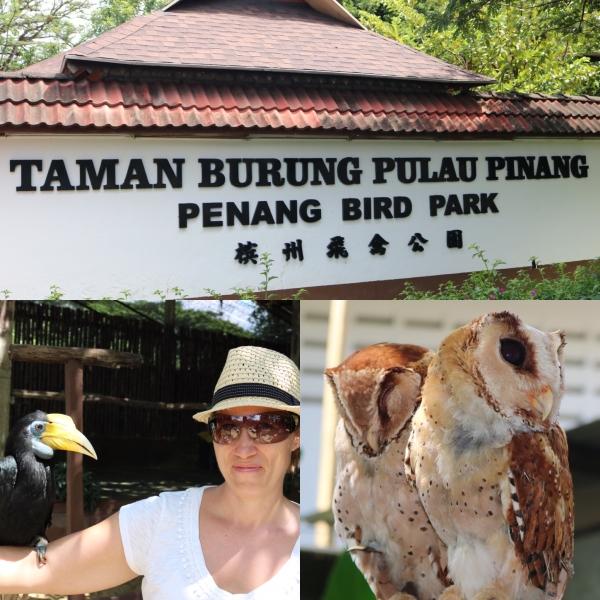 Penang Bird Park_1