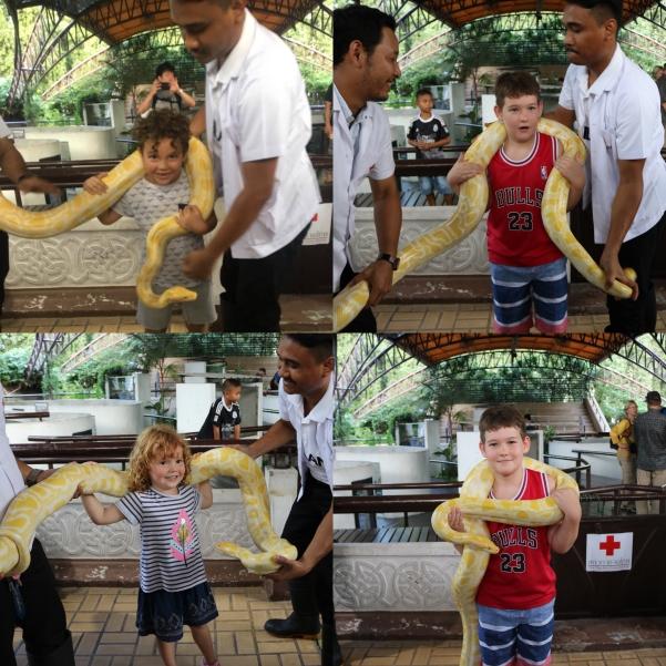 Snake Farm_3