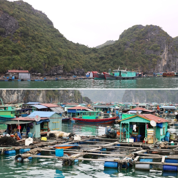 Floating Fishing Villages_Cat Ba_Vietnam