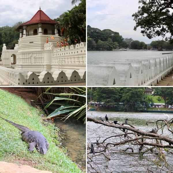 Kandy_Sri Lanka