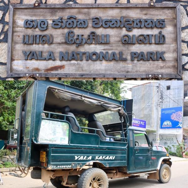 Yala National Park Safari_Sri Lanka