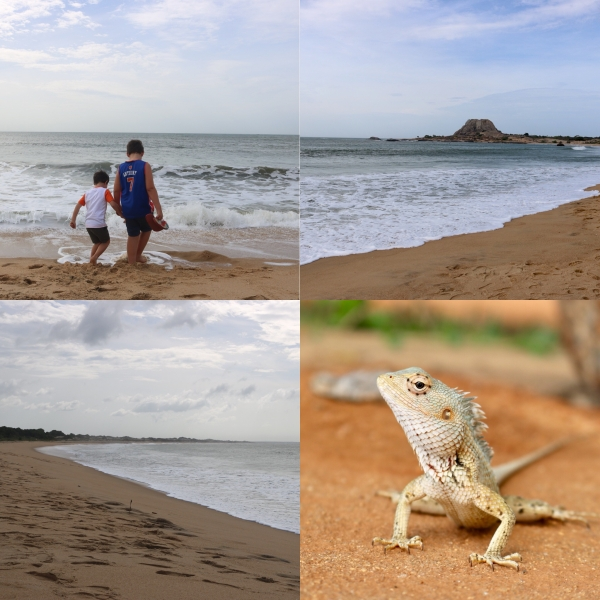 Yala National Park Safari_Sri Lanka_3