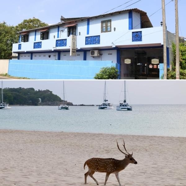 DockYard Inn_Trincomalee_Sri Lanka