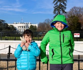 the white house_washington d.c_america