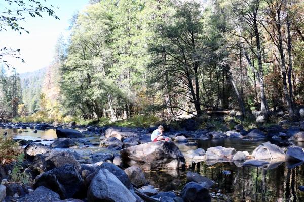 Lunch_Yosemite National Park_California_America