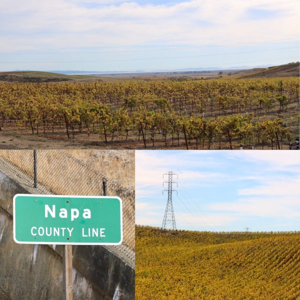 Napa Valley_California_America