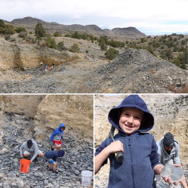U Dig Fossils_Utah_America