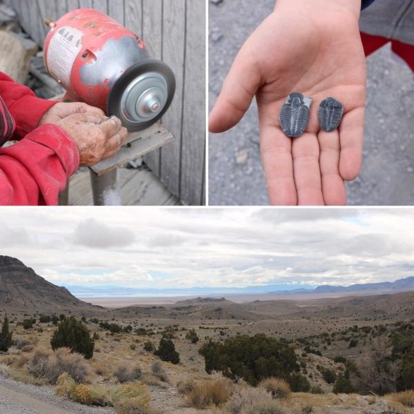 U Dig Fossils_Utah_America_1