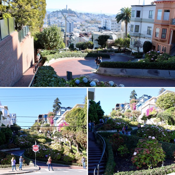 Lombard Street_Crooked Street_San Fransisco_California_America