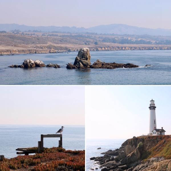 Pigeon Point Lighthouse_California_America