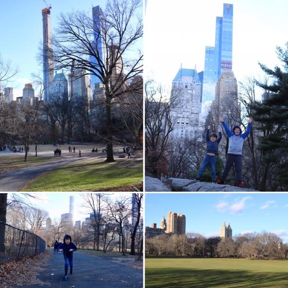 Central Park_New York_America