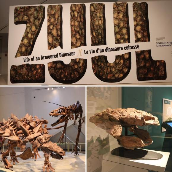 ZUUL_ROM_Royal Ontario Museum_Toronto_Ontario_Canada