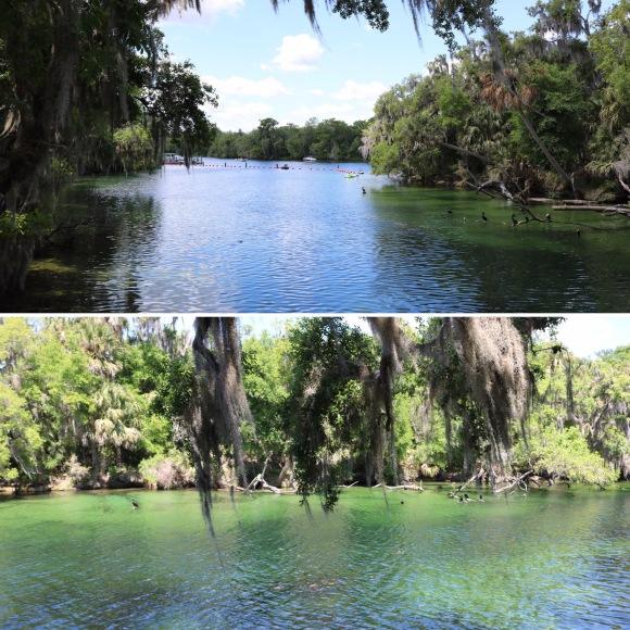 Blue Spring State Park_Florida_America_1