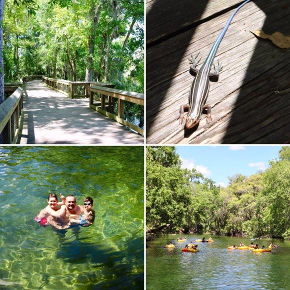 Blue Spring State Park_Florida_America_2