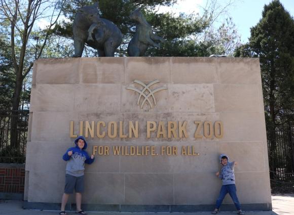 lincoln-park-zoo_chicago_illinois_america.jpg