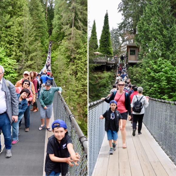 Capilano Suspension Bridge Park_Vancouver_British Columbia_Canada_1
