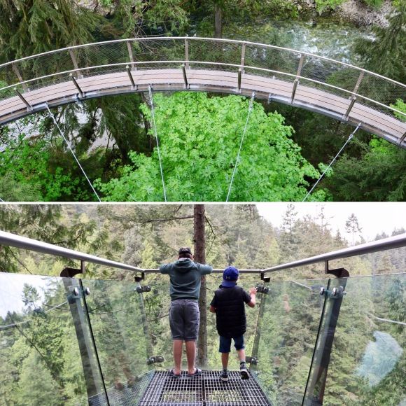 Capilano Suspension Bridge Park_Vancouver_British Columbia_Canada_2