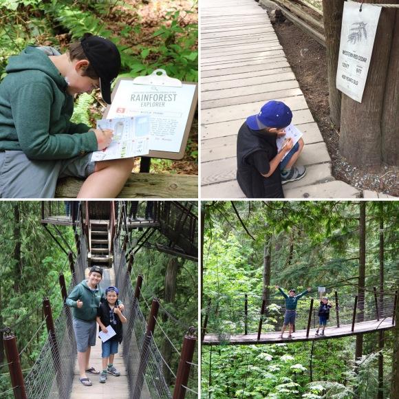 Capilano Suspension Bridge Park_Vancouver_British Columbia_Canada_3