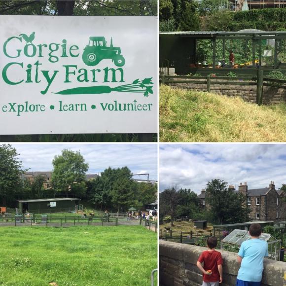 Gorgie City Farm_Edinburgh_Scotland